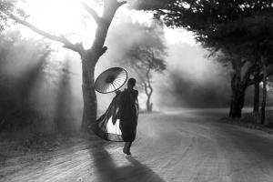 PSA HM Ribbons - Chee Keong Lim (Malaysia)Going Home 5