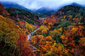 PhotoVivo Gold Medal - Raymond Seh-Guan Goh (Singapore)Autumn Mountain