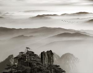 PSPC Merit Award - Yongan Gan (China)Mount Huangshan Ink