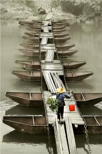 PSPC Merit Award - Ruiyuan Chen (China)Pontoon Bridge