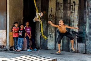 PhotoVivo Gold Medal - Sau Fong Neo (Malaysia)Naughty Monkey
