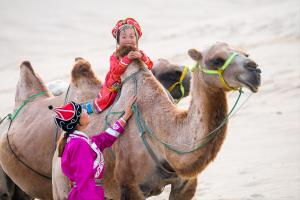 PhotoVivo Honor Mention - Ming Li (China)Childhood In Camel