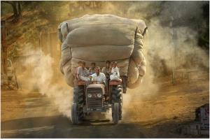 PhotoVivo Merit Award - David Poey-Cher Tay (Singapore)Heavy Going