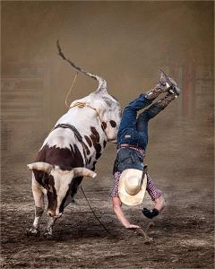 PhotoVivo Honor Mention - Ronald Wilson (USA)  Bull Rider 4