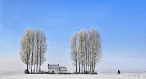 SPC Merit Award - Daniel Lybaert (Netherlands)  Landschap En Fietser