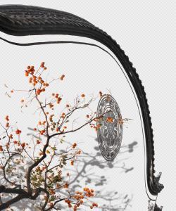 SPC Merit Award - Juan Cao (China)  Autumn Scenery