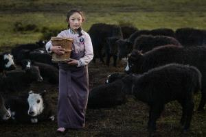SPC Merit Award - Xin Yan (China)  Cowherd On Prairie