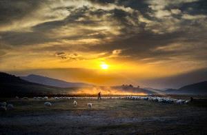 PhotoVivo Honor Mention - Gang Liu (China)  Between Heaven And Earth