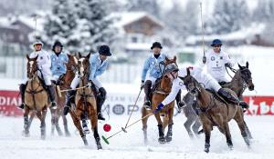 PhotoVivo Honor Mention e-certificate - Arun Mohanraj (United Kingdom)  Snow Polo