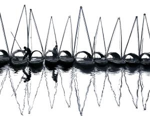 PhotoVivo Gold Medal - Yunsheng He (China)  Inverted Images Of Masts