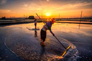 APAS Gold Medal - Cong Chi (China)  Salt Extraction4