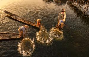ICPE Honor Mention e-certificate - Jing Li (China)  Fishing Life