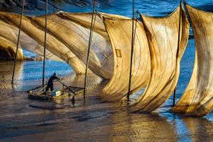 ICPE Gold Medal - Zenghua Liu (China)  Fisherman 2