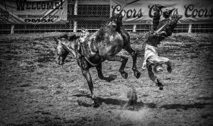 APU Honor Mention e-certificate - Xuehai Lu (China)  Tumble Off A Horse