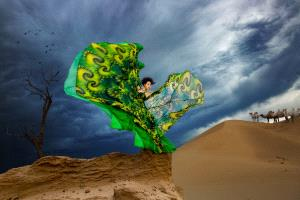 PhotoVivo Gold Medal - Yipei Hu (China)  Butterfly Dance