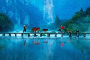 APAS Honor Mention e-certificate - Ping Lu (China)  Fairyland Xiandu