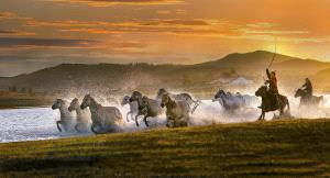 ICPE Gold Medal - Xuxin Zhao (China)  Herd Horses At Sunset