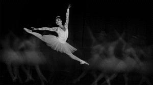 SPC Merit Award e-certificate - Woodpecker Huang (Taiwan)  Mono=Ballet Jump