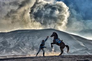 APU Gold Medal - Say Boon Foo (Malaysia)  Horse Rider 2