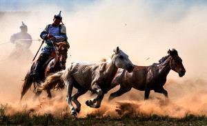 PhotoVivo Gold Medal - Mingyou Zhang (China)  A Horse